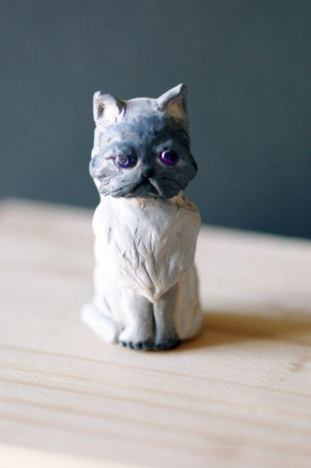 Sapph kitty