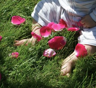 Fee w: rose petals (feet only)